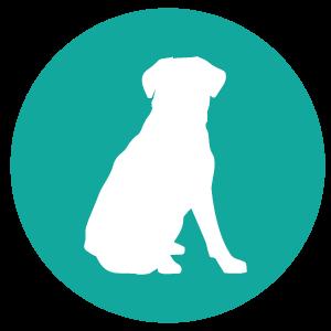 dog button-01