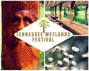wetlands festival 9 2